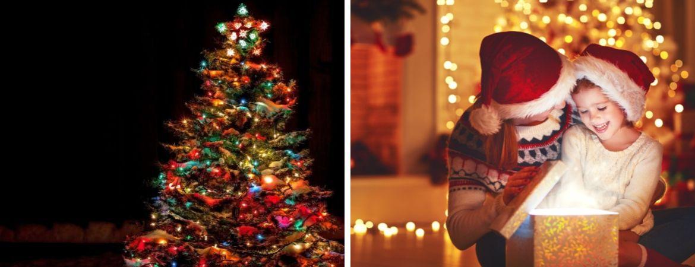 Kerstverlichting voor binnen en buiten vindt u bij GroenRijk Oosterhout