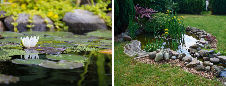 vijver-vijverpomp-vijverfilter-waterplant-oosterhout-tuincentrum